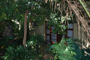 86 on Langenhoven Bed & Breakfast, Bed & Breakfasts  Oudtshoorn - big - 25