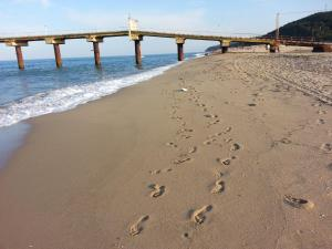 Al Rial Beach Apartments - фото 10