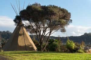 obrázek - Russell-Orongo Bay Holiday Park