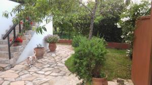 Casa Candelas, Prázdninové domy  Lugo de Llanera - big - 23
