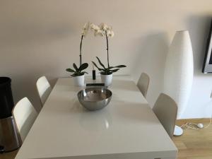 Dutch Flower Apartment - фото 4