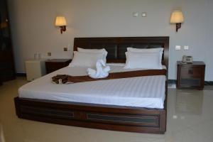 Cleopatra Hotel & SPa, Отели  Dirē Dawa - big - 11