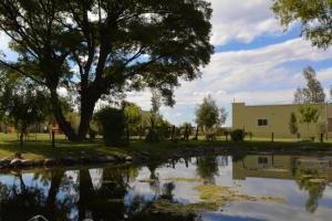 Ayres de Cuyo, Apartments  San Rafael - big - 3