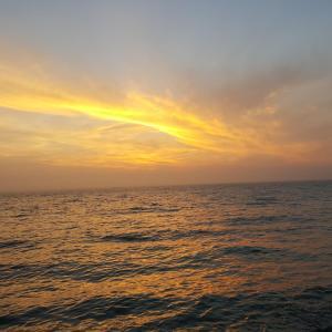 Gîtes de la Mer - Mer et Soleil, Case vacanze  Hauteville-sur-Mer - big - 36