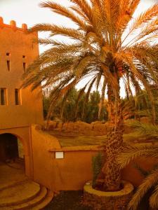 Villa Boujouf, Guest houses  Guelmim - big - 14
