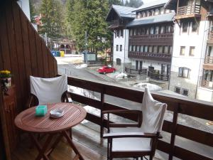 Kristine Apartment, Apartments  Sinaia - big - 16