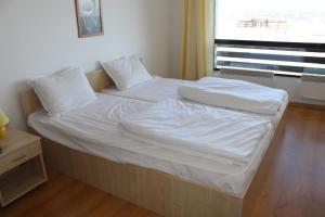 Apartment Kutelo, Appartamenti  Bansko - big - 45