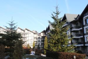 Apartment Kutelo, Appartamenti  Bansko - big - 17