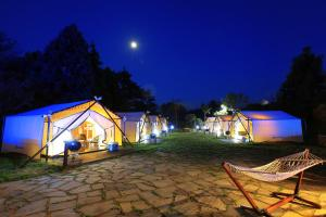 Ecohill Glamping Jeju, Luxury tents  Jeju - big - 7