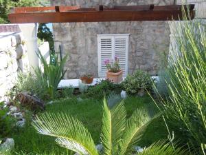 Apartments Busola, Apartments  Dubrovnik - big - 3