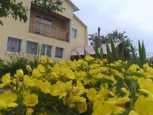 Guest house Reshemka