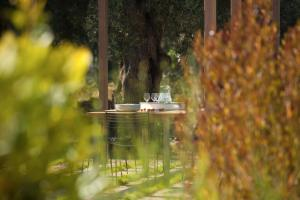 Agrikies Villas, Vily  Lefkada Town - big - 17
