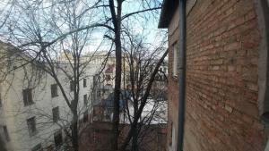 Apartment Ladybug - фото 16