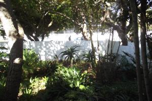 Eastcliff Cottage, Apartmanok  Hermanus - big - 14