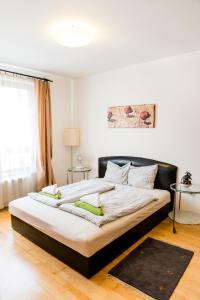 City Elite Apartments, Appartamenti  Budapest - big - 84