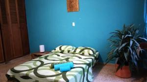 Casa Albaka Floresta, Affittacamere  Medellín - big - 27
