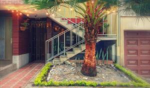 Casa Albaka Floresta, Vendégházak  Medellín - big - 13