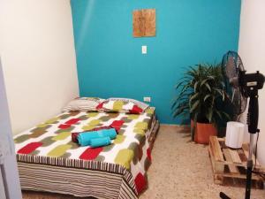 Casa Albaka Floresta, Affittacamere  Medellín - big - 5