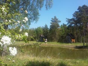 Alva Stugby, Dovolenkové parky  Hemse - big - 41