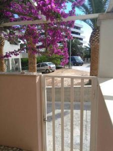 Apartman Podgora, Appartamenti  Podgora - big - 2