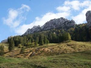 Stöcklhof, Farmy  Rottau - big - 30