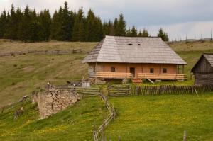 Casa Florea