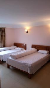 Thanh Thuy Guest House