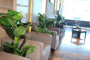 Zahrat Layan Hotel, Residence  Al Qunfudhah - big - 40