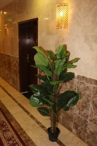 Zahrat Layan Hotel, Residence  Al Qunfudhah - big - 37