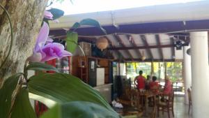 Cabinas y Restaurante Los Loritos