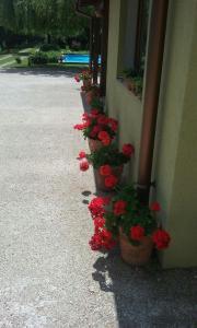 Toscana Villa, Vily  Snagov - big - 17