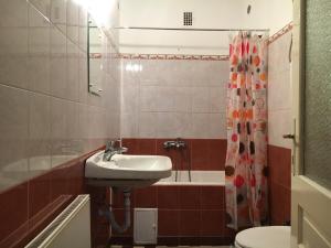 Radu Apartment, Apartmanok  Brassó - big - 5