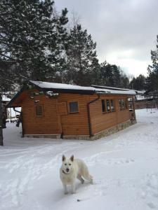 Holiday home Amina - фото 25