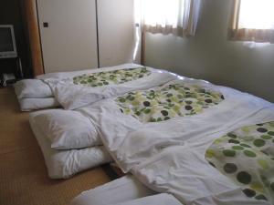 obrázek - Business Hotel Hayashiso