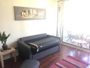 Departamento Providencia, Апартаменты  Сантьяго - big - 7