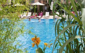Sun & Sea Apartments, Apartments  Sunny Beach - big - 1