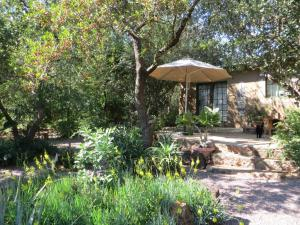 Phokoje Bed and Breakfast, Bed & Breakfast  Ramotswa - big - 5