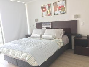 Apartamento Parque Arauco Kennedy, Апартаменты  Сантьяго - big - 1