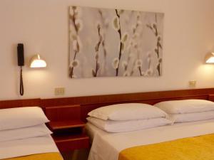 obrázek - Hotel D'Annunzio