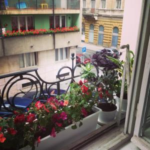Spacious Bohemian Home, Appartamenti  Budapest - big - 9