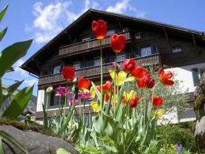 obrázek - Hotel Sternen
