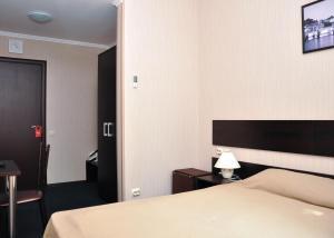 Отель Вояджер - фото 16
