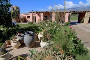 Finca Huayrapuca, Hotely  Famatina - big - 24
