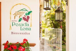Hotel Posada Loma Reviews