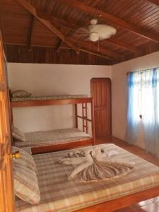 Corcovado Wild Hostel