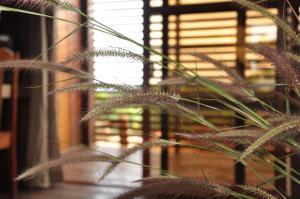 Ratanakiri Paradise Hotel & SPA, Hotely  Banlung - big - 7