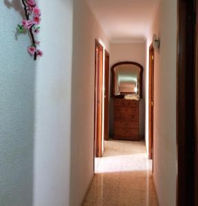 Apartamento Todo Cerca, Apartments  Alicante - big - 8