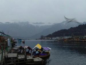 City Of Kashmir, Отели  Сринагар - big - 54