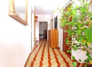 Apartment Nada 1202, Ferienwohnungen  Banjole - big - 21