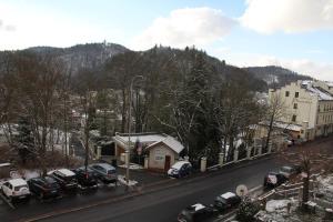 Jurincom apartments na Vyhlidce, Apartmány  Karlovy Vary - big - 10